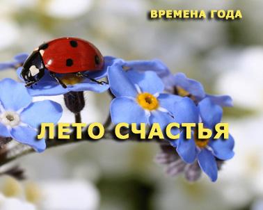 Лето счастья 2012
